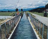 左岸幹線用水路