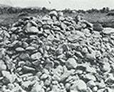 入植開拓の歴史 新興、千本野開拓 開墾から出た石の山 昭和30年